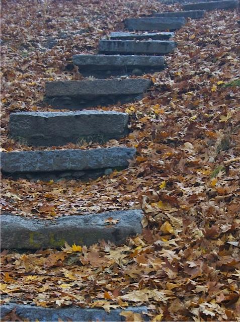 Stone steps at Great Esker Park