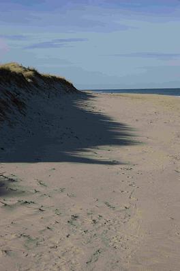 Head of The Meadow Beach Truro MA